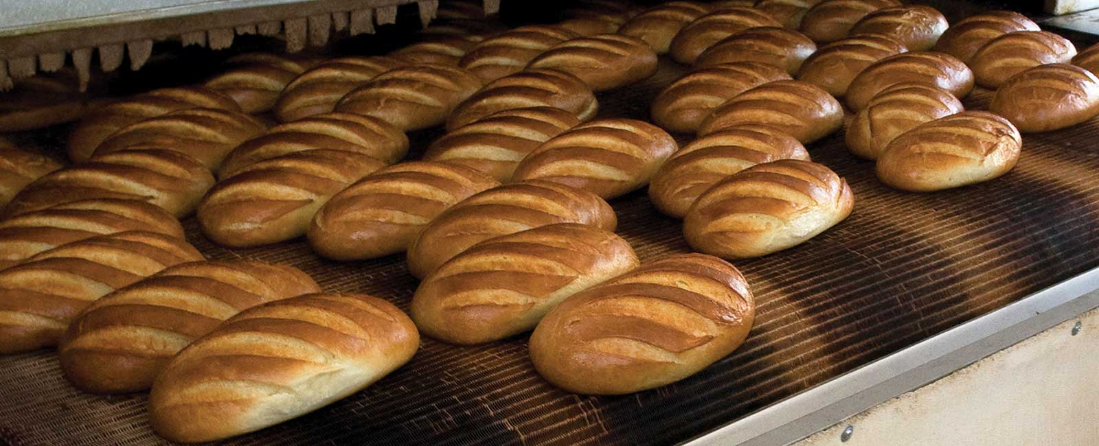 Loaves of bread in an industrial oven.